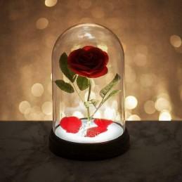 Lampara Rosa Encantada De...